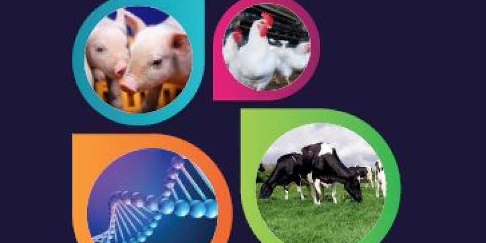 Proceedings of the Precision Livestock Farming '19 Conference